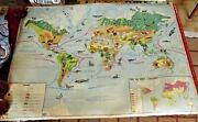 Old Map School Poster Mdi 1960 Planisphandegravere Map Monde Animaux Lion Andeacutelandeacutephant Ara