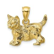 14k Yellow Gold Cat Standing W/raised Tail Charm L- 20.5mm, W-18.4mm
