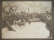 Vtg C.1890s Hoxworth Livery Feed And Sale Stable Husky Dogsled Mail Photograph