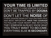 Your Time Is Limited Steve Jobs - Framed 30 X 40 Official Print