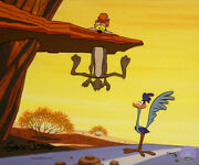 Warner Brothers-limited Edition Cel-zoom And Board Ii-wile Coyote + Road Runner