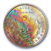 1885 O 1 Morgan Dollar Ngc Ms 63 Monster Toned Colorful Beauty Cac And Star