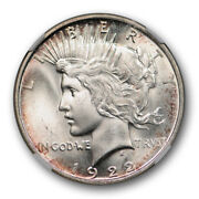 1922 D 1 Peace Dollar Ngc Ms 66 Uncirculated Lightly Toned Attractive Denver...