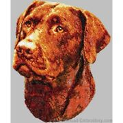Embroidered Ladies Short-sleeved T-shirt - Chocolate Labrador Retriever Dle1608