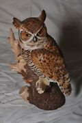 Beautiful - Great Horned Owl - Majestic Owls Of The Night - 1986 By Maruri