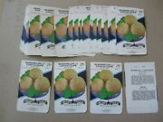 Wholesale Lot Of 50 Old Vintage - Cantaloupe - Rocky Ford - Seed Packets - Empty