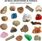 National Geographic Mega Fossil And Gemstone Dig Kits - Excavate 10 Real Fossils