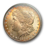 1885 1 Morgan Dollar Ngc Ms 64 Uncirculated Cac Approved Toned Beauty