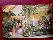 1960's Tropical Gardens On The The Mall At Cherry Hill, Nj Vintage Postcard