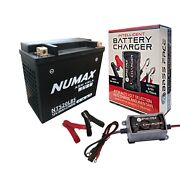 Tx20l-bs Motorcycle Battery Harley Davidson 1450cc Fxst Y With Charger Maintaine