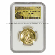 2009 20 Ultra High Relief Gold Double Eagle Ngc Ms69pl Proof Like Graded Coin