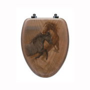 Wood Toilet Seat In Oak Brown Lengthen Closed Front High Gloss Piano Finish