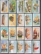 1929 Nicolas Sarony Ships Of All Ages Tobacco Cards Complete Set Of 50