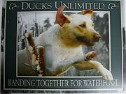 Vintage Replica Tin Metal Sign Duck Unlimited Yellow Lab Dog Decoy Hunting 2188