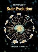 Principles Of Brain Evolution By Georg F. Striedter English Hardcover Book Fre
