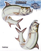 Tarpon Decals Bumper Stickers Right Left Facing Gifts Fishing Men Boys 4-1/2