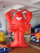 Advertising Giant New 6m Restaurant Promotion Inflatable Lobster With Blower Qi