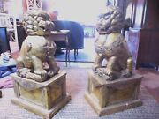 Pair Antique Chinese Wood And Gilt Temple Foo Dogs 39 High