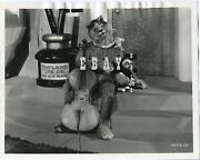 Laurel And Hardy Vintage Original Photo Walt Disney Mickey Mouse Babes In Toyland