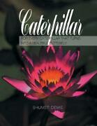 Caterpillar For Every Caterpillar That Turns Into A Beautiful Butterfly By Shum