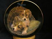 Double Delight Collector Plate Sally Miller Puppy Dog Collie Litter Basket Rare