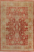 Antique Style Oushak Egyptian All-over Rust Area Vegetable Dye Hand-knotted 9x12