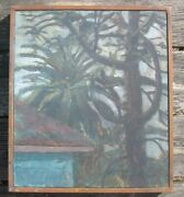 Vintage Oil Painting Monkey Puzzle And Palm Tree Colin Brant Listed 14 By 16 In