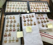 Lot Of 104 Hard Rock Cafe Butterfly Pins All Different From All Over The World