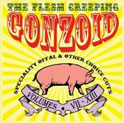 Andrew Liles - Flesh Creeping Gonzoidspeciality Offal 2 Cd Used - Very Good C