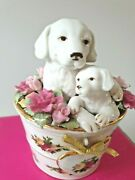 Royal Doulton / Royal Albertold Country Roses Pair Of Puppies In Pot Of Flowers