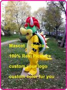 Halloween Bowser Monster Mascot Costume Fancy Anime Cosplay Dress Outfit Adult