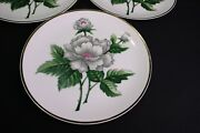 Ucagco Floral 4 Dinner Plates Occupied Japan White Flower 9 1/4 Coupe