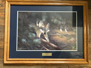 Andldquoundercoverandrdquo By Hayden Lambson Signed Limited Edition Framed Print 531/5500 Wolf