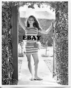 Sexy Claudia Cardinale Vintage Private Photo Original Busty Bare Legs Barefoot