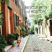 Rescue Pets Of Boston At Home With The Cityand039s Luckiest Pets By Brittany Bang