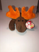 Retired Ty Beanie Baby Chocolate Moose With Tags Rare Perfect