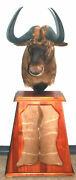 African Black Wildebeest Taxidermy Shoulder Mount On Swivel Stand With Hide