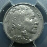 1927 D 5c Buffalo Nickel Five Cents Certified Pcgs Ms63 Us Mint Coin
