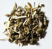 Wood Betony Stachys Officinalis - Dried