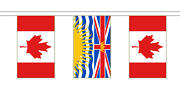 Canada And Canadian Provinces Friendship Flag Bunting - 20m With 56 Flags