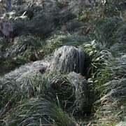 Adult Camo Hunting Ghillie Suit 3d Withered Grass Tactical Sniper Set Kits