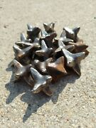 Cavalry Jacks Horse Caltrops Cast Iron Military Antiques Lot Of 16 Year Unknown