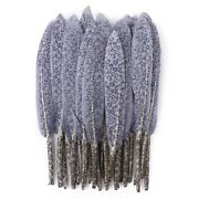Natural 10 Goose Feathers Printing Plums For Crafting Accessories Tools Decor