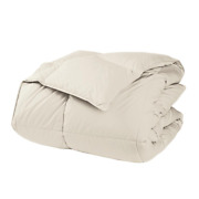 The Company Store Comforter Twin Xl 295-thread Count Duck Down Cotton Ivory
