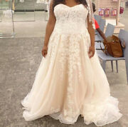 Strapless Sheer Lace Fitted Wedding Dress