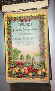 Stecher Lithograph Co Rochester - Cabinet Fruit And Flower Plates Salesman Book
