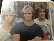 Sting Singer Musician The Police Rock Band Music Signed 8x10 Photo Coa
