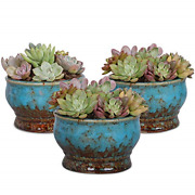 Colorful Succulent Planter Ceramic Glaze Indoor And Outdoor Set Of 3