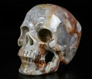 4.0 Red Crazy Lace Agate Carved Crystal Skullsuper Realistichealing 377