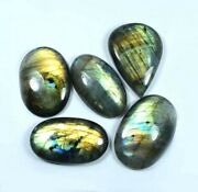 Natural Labradorite Cabochon Wholesale Lot Gemstone For Jewelry 342crt 1737